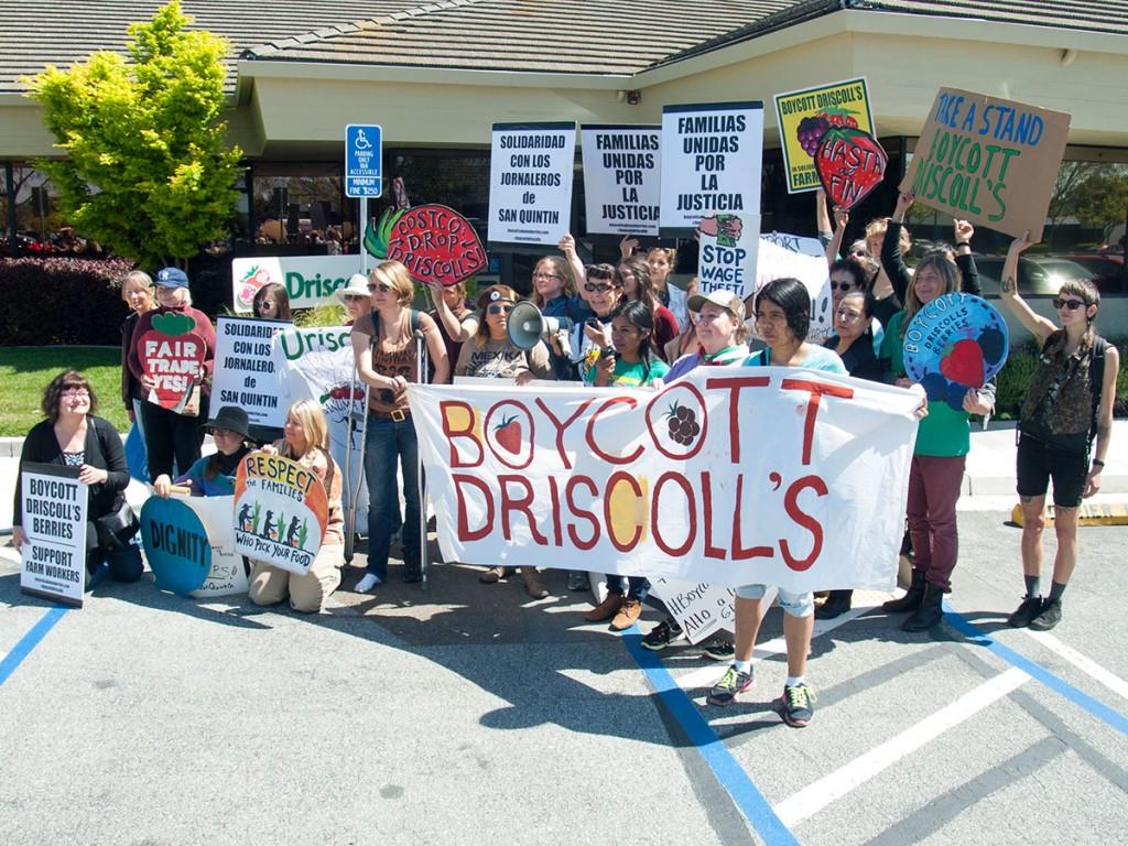 boycott-driscolls-watsonville_1_3-31-16