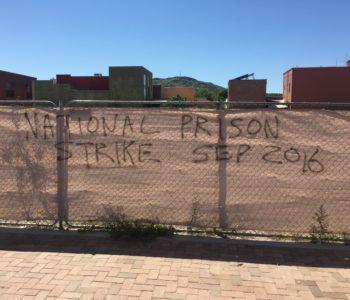 Tucson: Graffiti and Wheatpaste in Support of Prison Strike