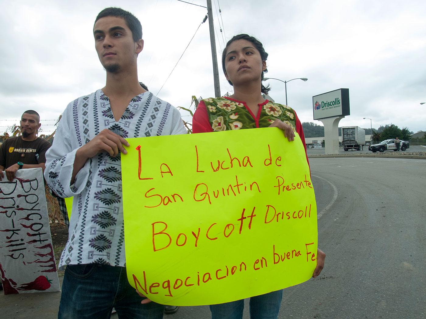 boycott-driscolls-protest-lucha