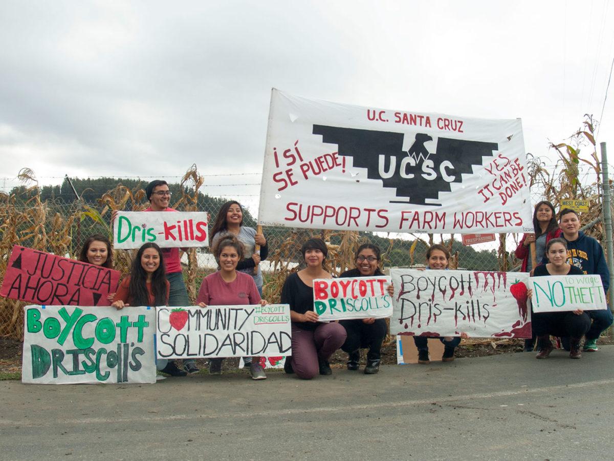boycott-driscolls-ucsc-mecha