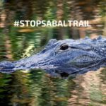 Sabal Trail Pipeline Resistance