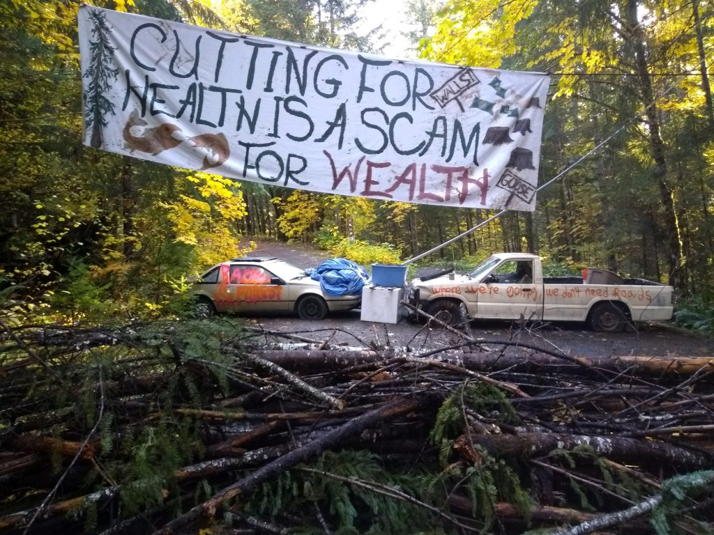 Call to Action: Blockade at Oregon's Goose Timber Sale, Help Needed