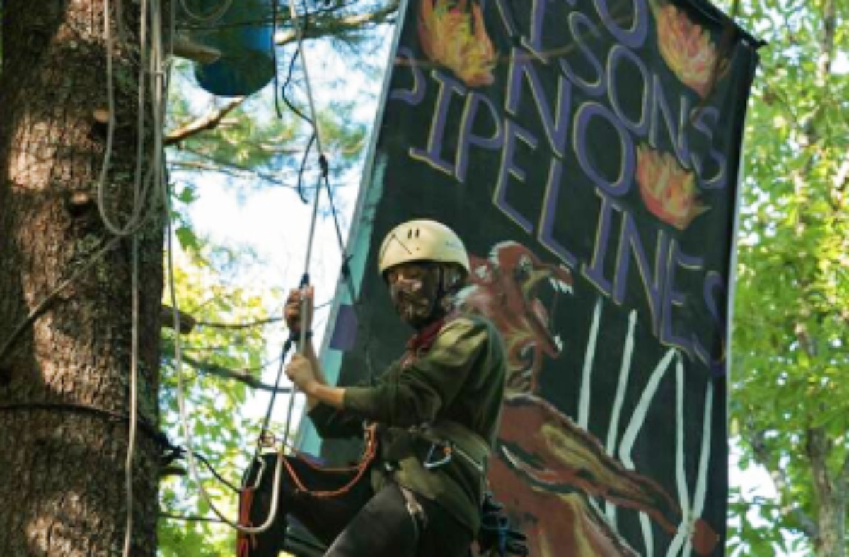 Tree Sit in Hellbender Autonomous Zone Hits 50 Days - It's Going Down